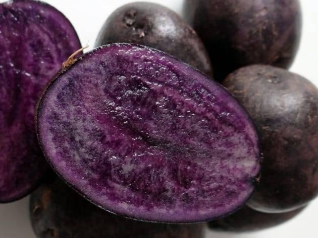 Фиолетовая картошка сорт
