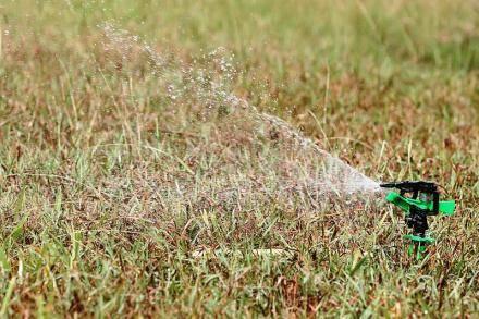 8 основных правил полива сада осенью