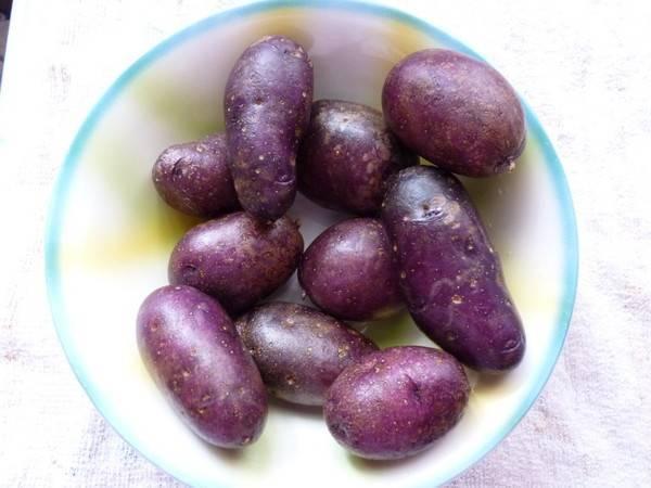 Синяя картошка сорт