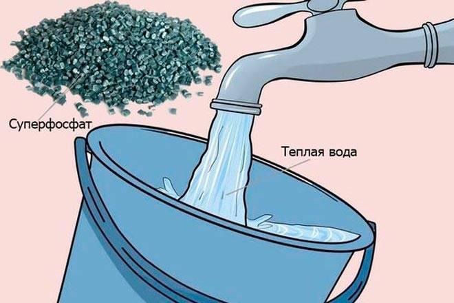 Азотно фосфорно калийное удобрение применение