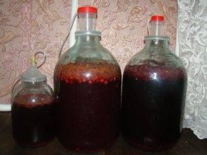 Домашнее вино на варенье как ставить