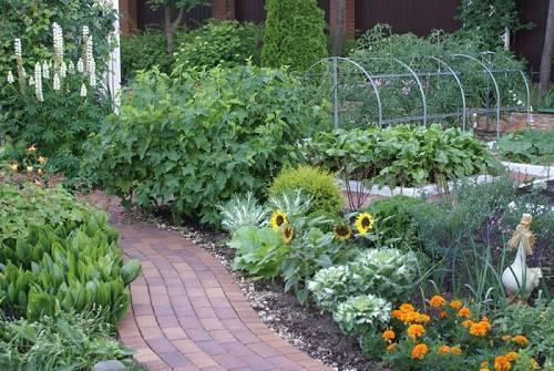 Огород в сибири полезные советы