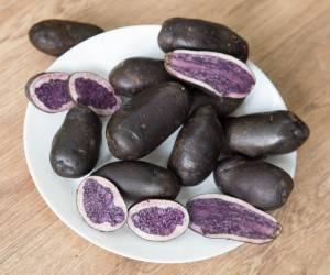 Лучшие сорта картофеля для ленинградской области