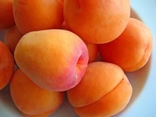 Поздние сорта абрикоса