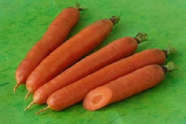 Морковь крепыш описание