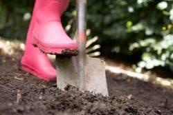 Нужно ли копать землю осенью