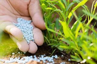 Способы внесения минеральных удобрений