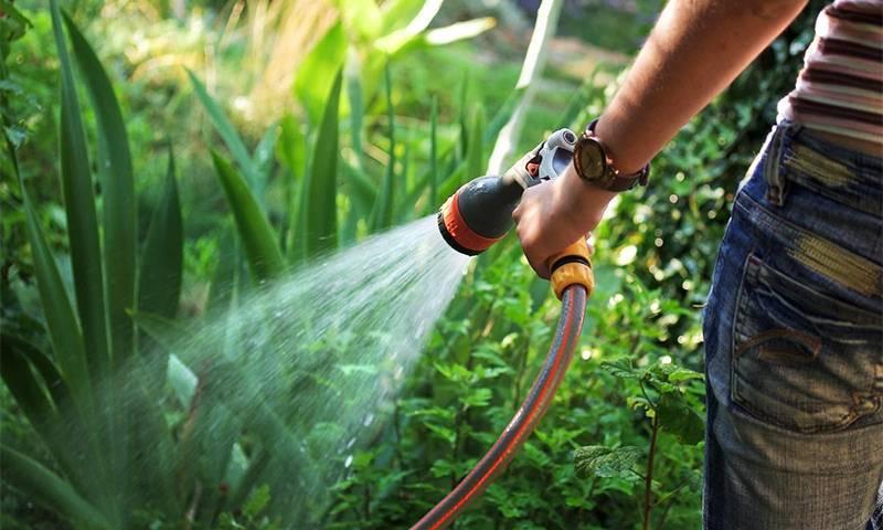 Садовый шланг для полива