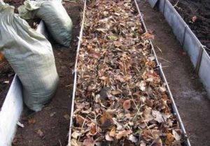 Как сделать теплую грядку осенью