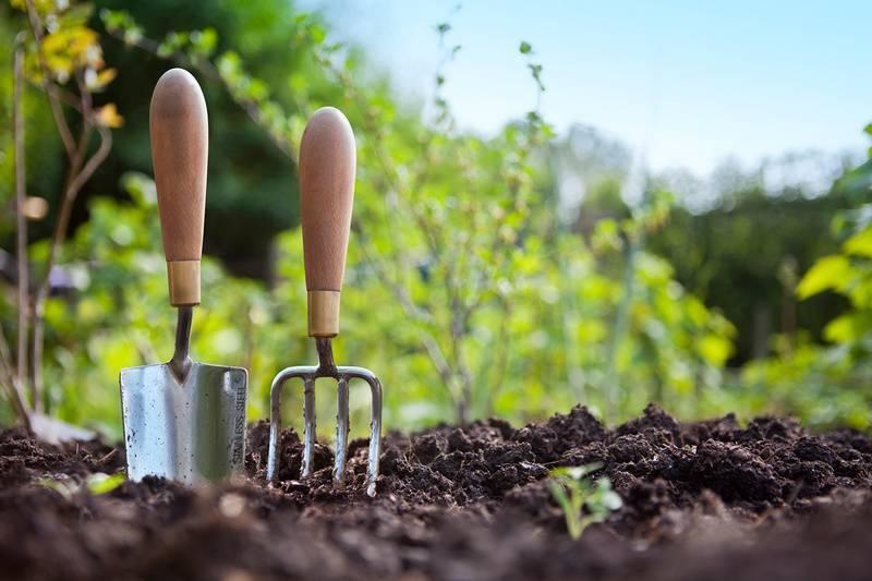 Вещество повышающее плодородие почвы