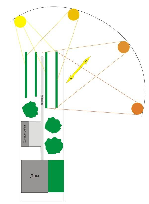 Схема посадки виноградника