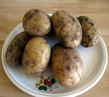 Картошка почернела можно ли ее есть
