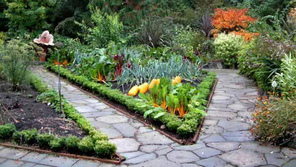 Дача сад огород фото дизайн