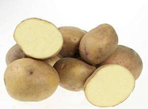 Ранние сорта картофеля фото и описание
