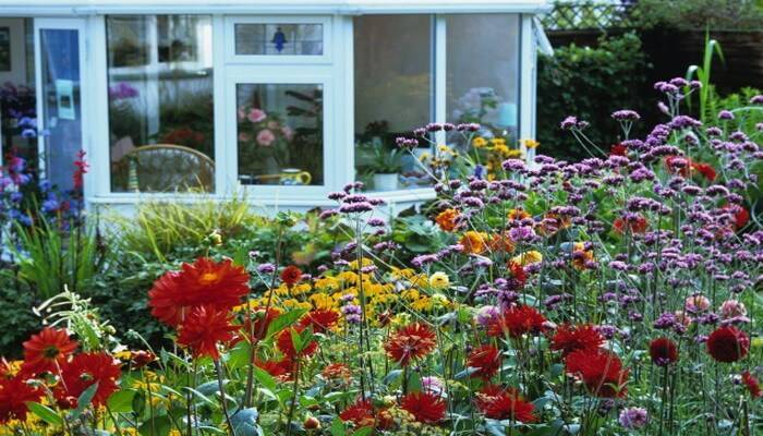 Цветы в ландшафтном дизайне фото