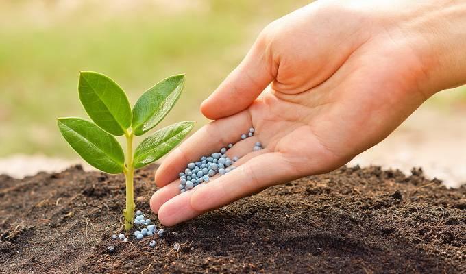 Виды кислотности почвы