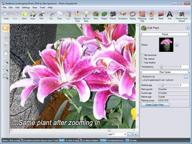 Проектирование садового участка онлайн