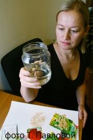 Как повысить всхожесть семян