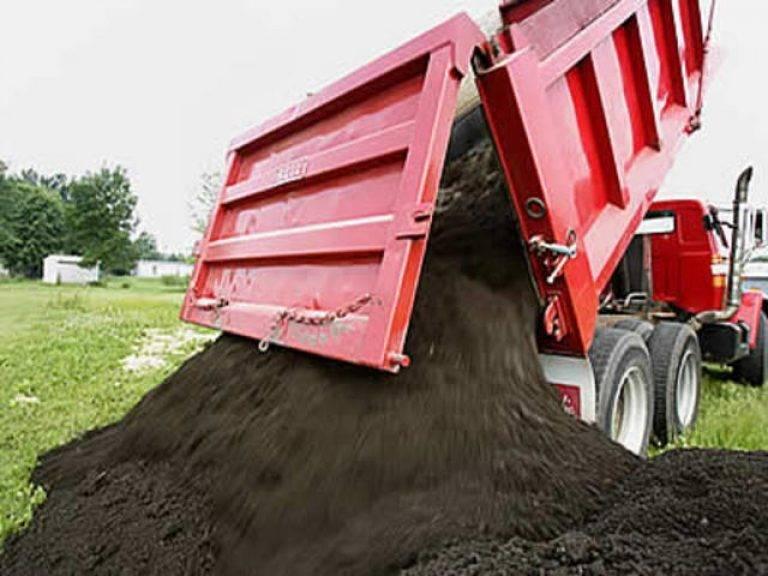 Какая почва самая плодородная