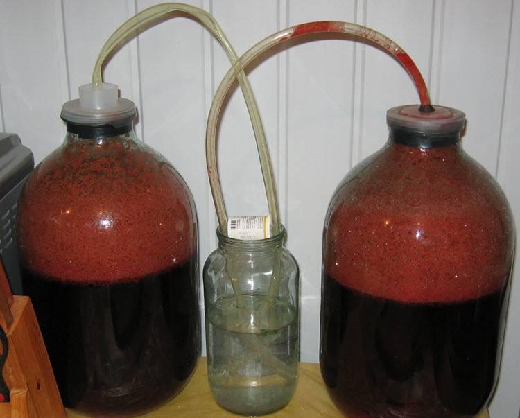Как правильно сделать домашнее виноградное вино