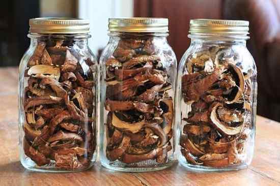 Сушка грибов в домашних условиях в духовке