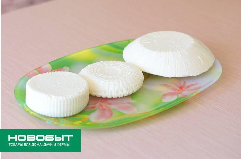 Как варить сыр в домашних условиях