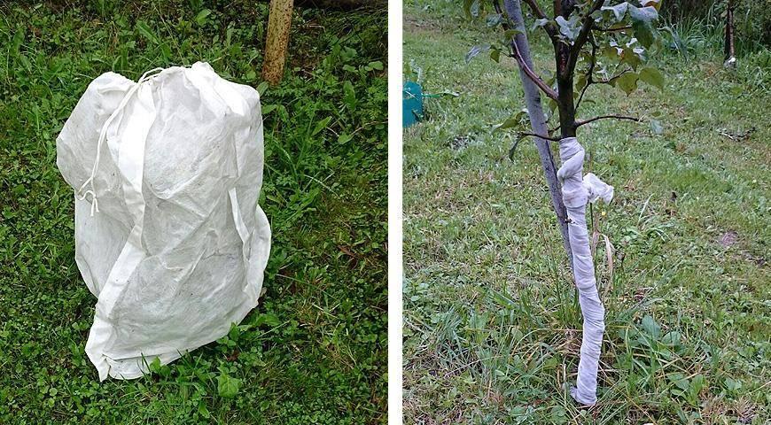 Мешковина для укрытия растений на зиму