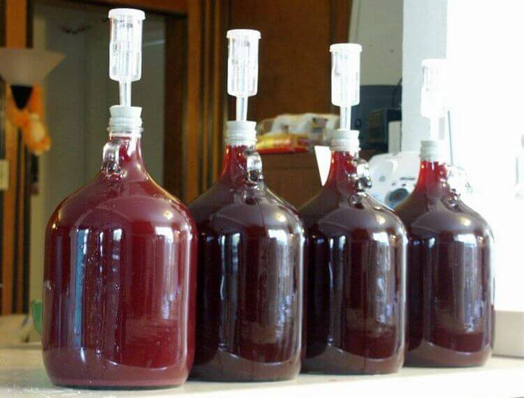 Вино из варенья в домашних условиях рецепт