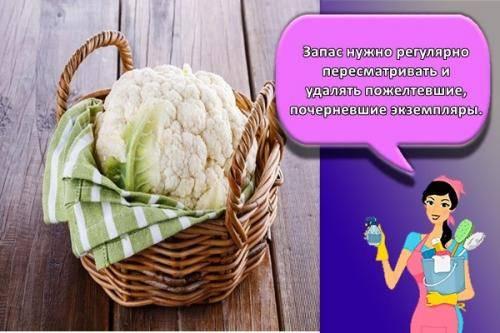 Как правильно хранить капусту в холодильнике