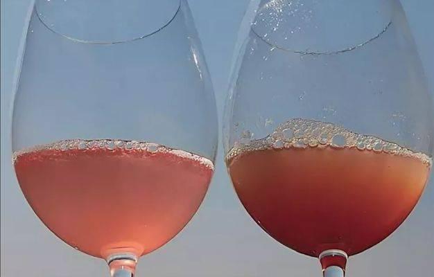 Изготовление виноградного вина в домашних условиях рецепты