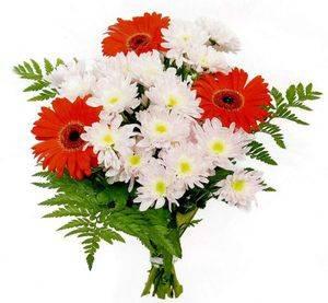 Виды цветов названия и фото для букетов
