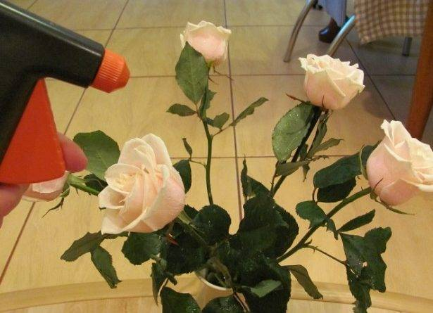 В какой воде хранить розы