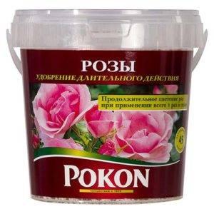 Осеннее удобрение для роз