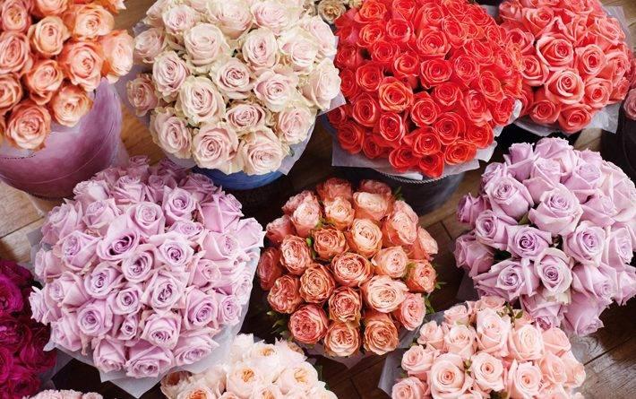 Как выбирать розы