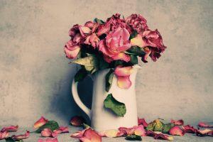 При какой температуре хранить розы в холодильнике