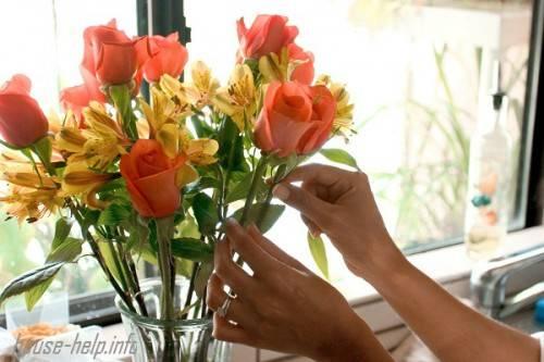 Как продлить жизнь срезанным розам в вазе