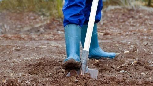 Нужно ли копать огород под зиму