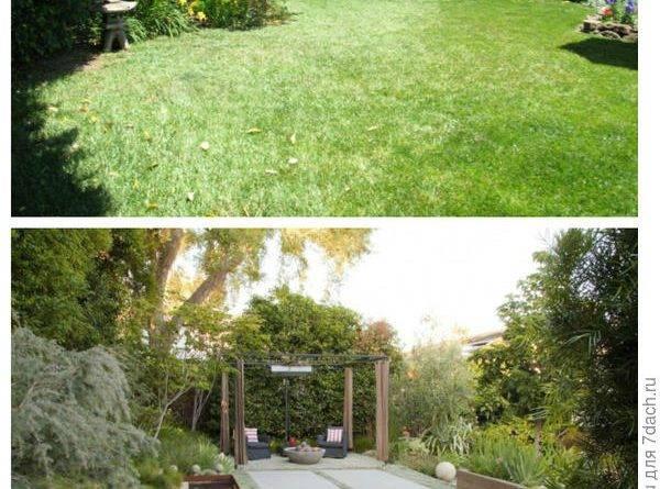 В старом саду над беседкой заброшенной