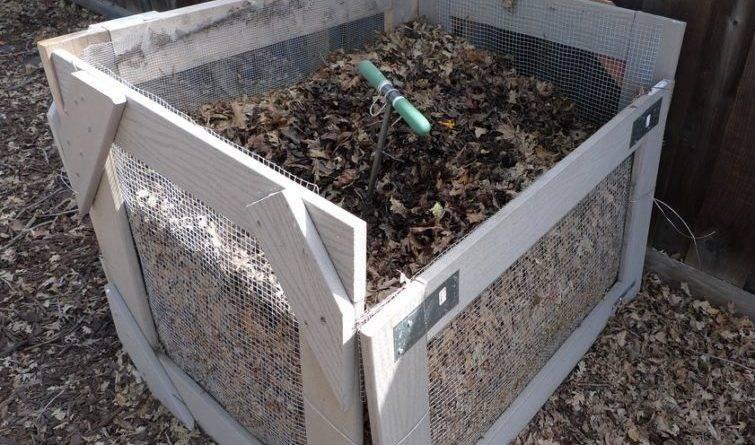 На что влияют фосфорные удобрения