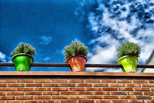 Какие лампы подходят для выращивания растений