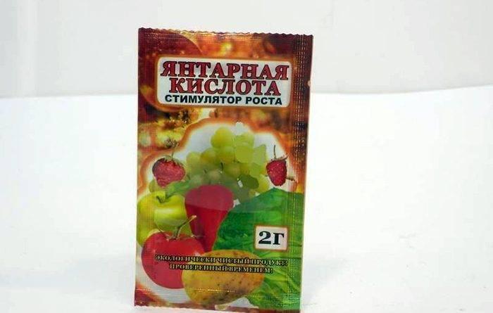 Таблетки янтарная кислота применение для цветов