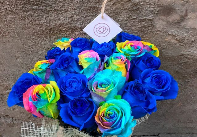 Разноцветные розы фото