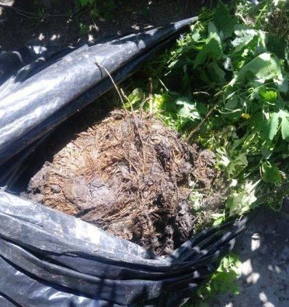 Как сделать компост в мешках