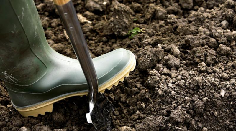 Фосфорно калийное удобрение осень