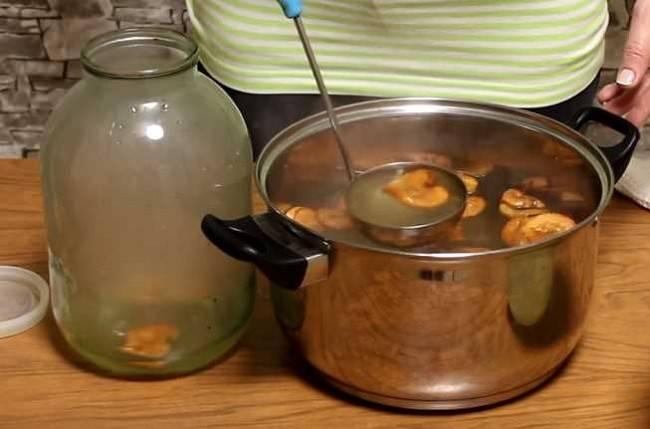 Как сделать березовый сок в домашних условиях