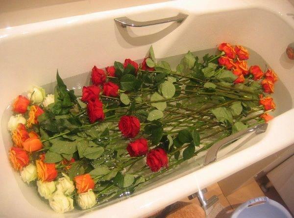Чтобы цветы дольше стояли в вазе розы