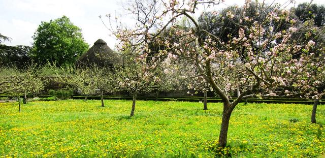 Садово огородные работы