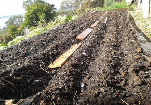 Повышение плодородия почвы технологии xxi века