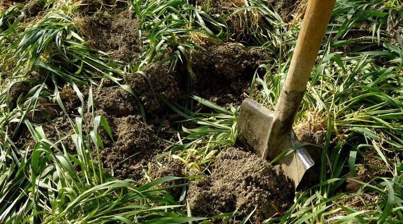 Суглинок как улучшить почву