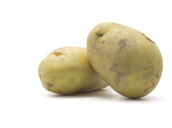 Зеленые пятна на картофеле